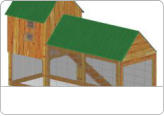 Build a Chicken Coop - Homes for Chickens